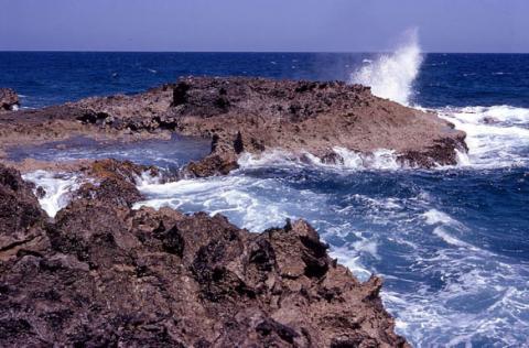 islasswan3.jpg