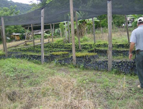 honduras-obsevatorio.jpg